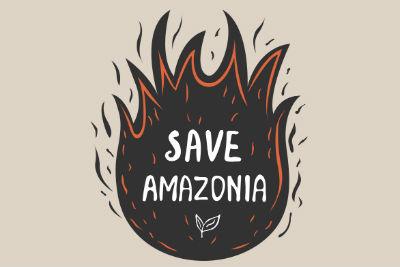 Amazonie - Actu Servais - gestion de crise et enjeux économique