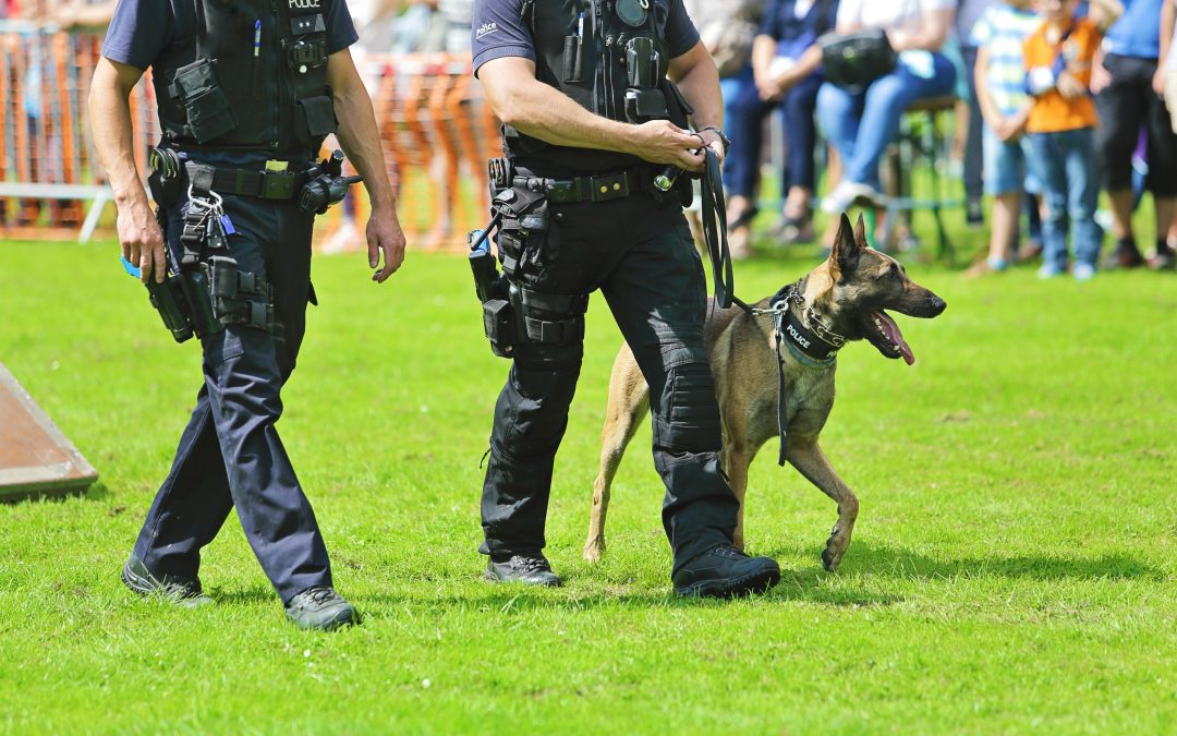 Devenir Policier à la brigade canine